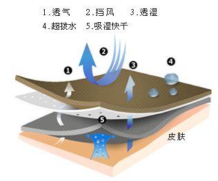 TPE无孔防水透湿膜面市